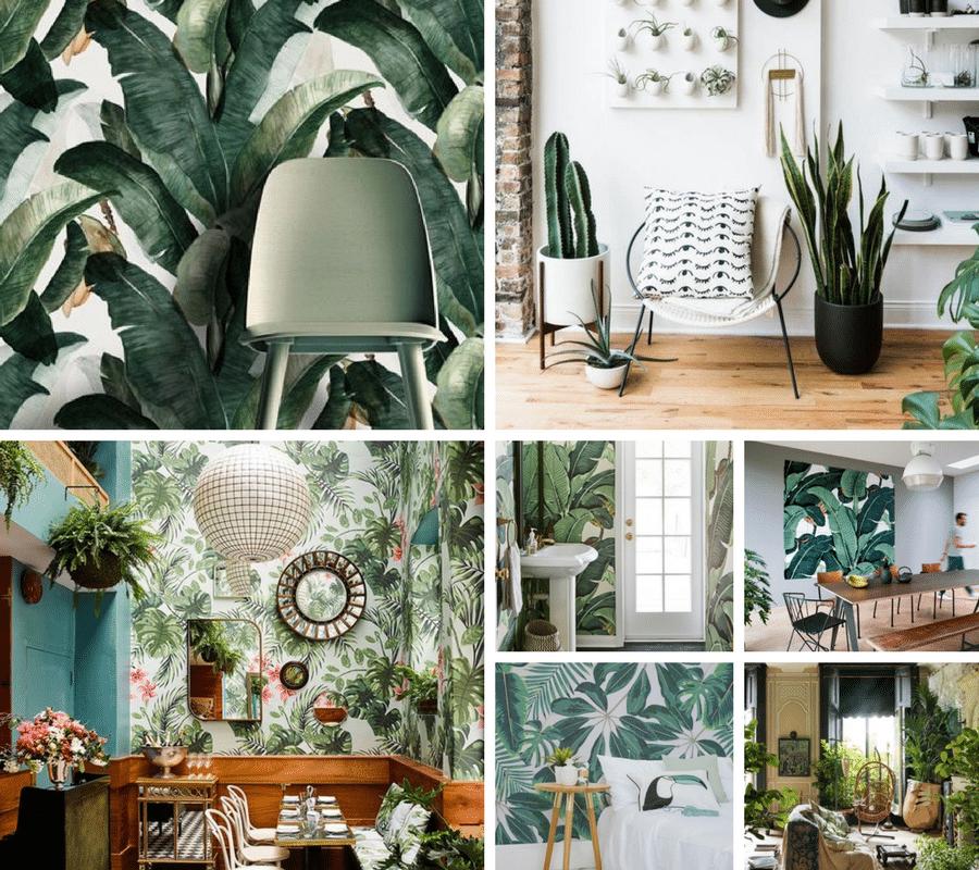 home design trend