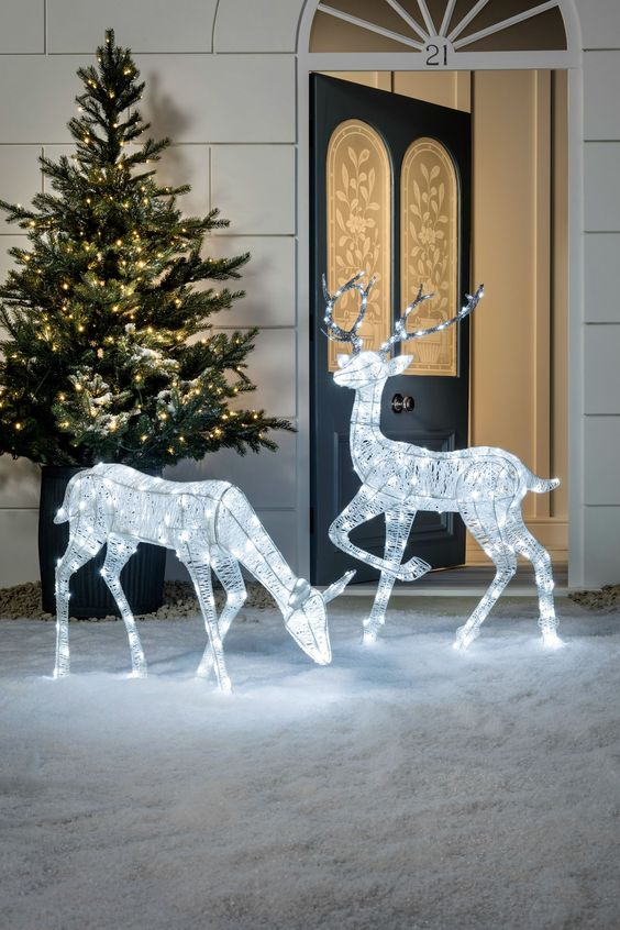 Reindeers by the Door