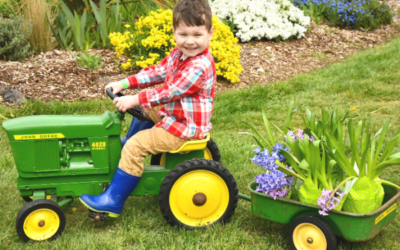 Spring Cleaning: Landscaping Dos and Donts