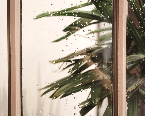Tips for Making Your Home Rainy Season-Ready
