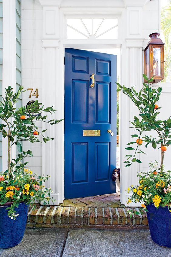 Improve Your Curb Appeal